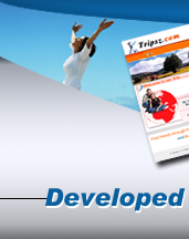 Website development and web design firm offering affordable web page design